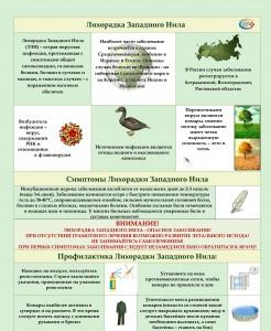 InkedListovka-Likhoradka-Zapadnogo-Nila-1_LI